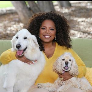 Oprah Winfrey diz reconhecer os sacrifícios que a maternidade exige e, por isso, optou por não ser mãe