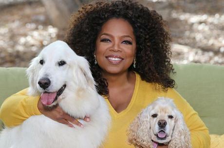 Oprah doa 10 milhões de dólares ao combate da epidemia