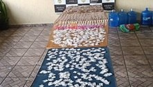 Polícia detém traficante e apreende duas mil porções de drogas em SP