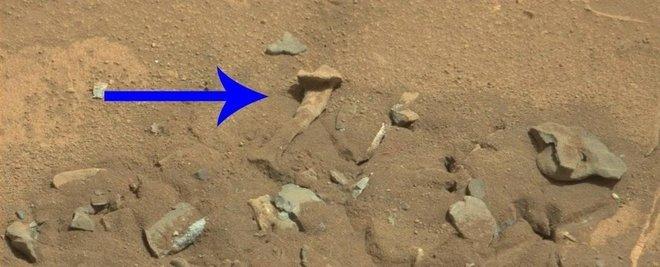 Na foto, vemos o que de fato parece um fêmur humano na foto