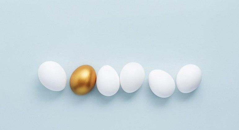 Diversificar diminui o risco e aumenta a chance de ganhos