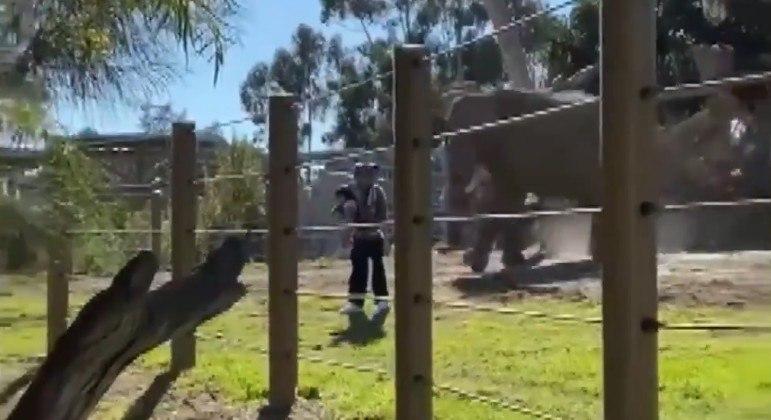 Pai foi preso após ser acusado de invadir recinto para elefantes com filha de 2 anos no colo