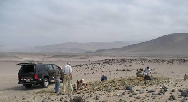 O fóssil foi encontrado nas rochas de Yumaque, na área desértica em frente à Praia Media Luna, na costa sul do Peru