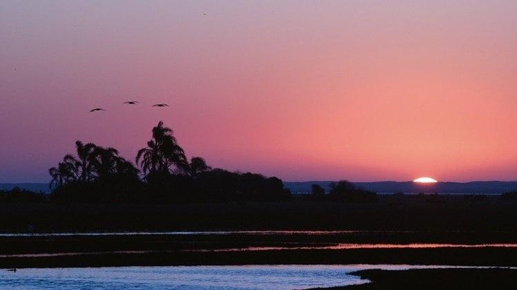 Cerrado, Mata Atlântica, mares, rios e montanhas interagem em paisagens fantásticas que precisam ser preservadas a cada dia (na foto, a Lagoa do Peixe, Pampa)