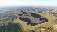 Energia: precisamos de investimento e mais incentivo