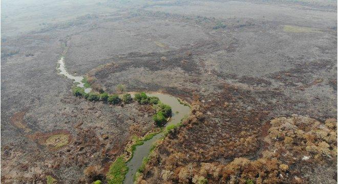 Imagem que mostra devastação em Pantanal teve mais de 160 mil reações no Facebook nos últimos dias