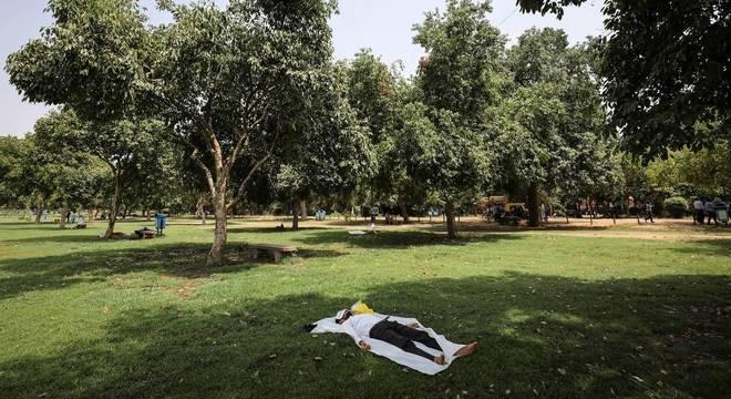 Contato com a natureza em parques, bosques ou praias levam ao bem-estar