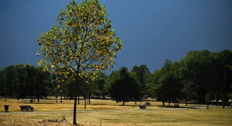 Vista do parque Clapham Common, em Londres, durante o verão britânico