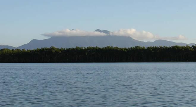 Área de 50 mil metros quadrados de Mata Atlântica foi desmatada no Parque
