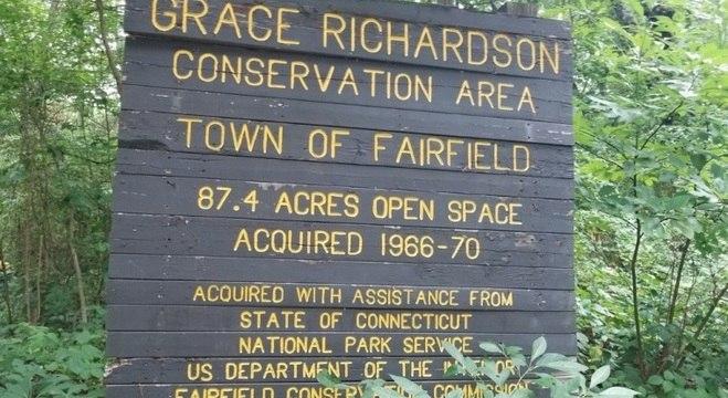 Os idosos foram presos em uma área de conservação na cidade de Fairfiels