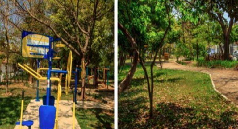 Árvores do parque linear Rapadura serão derrubadas para obras da linha 2-Verde do Metrô