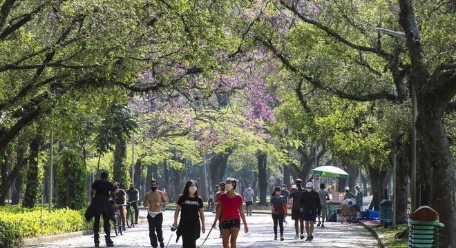 Segundo a OMS, áreas verdes nas cidades afetam  diretamente a qualidade de vida