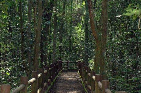 Parque Nacional de Brasília foi criado em 1961