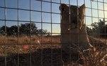 NÃO VÁ EMBORA: Construtores acham caixa de 150 anos escondida em salão de sinuca