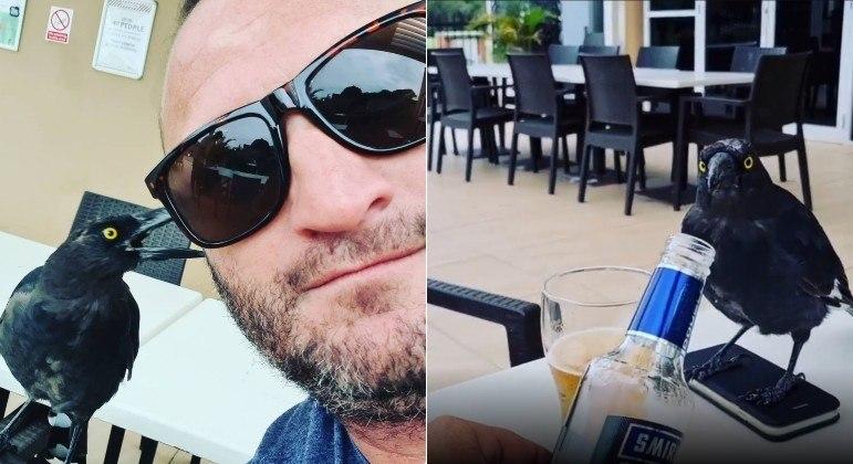 Pássaro beberrão invadiu mesa para roubar goles de cerveja do homem acima