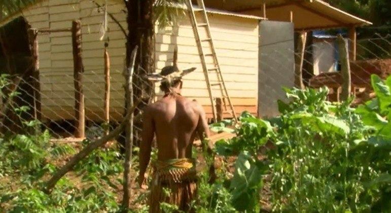 Cerca de 80 indígenas Pataxó estão vivendo em uma área de preservação na Grande BH