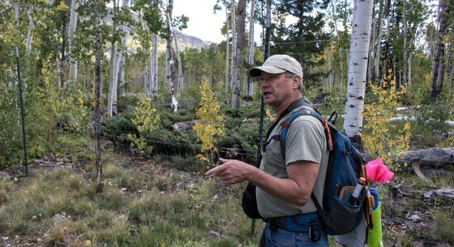 Paul Rogers se dedica a monitorar a vida do Pando