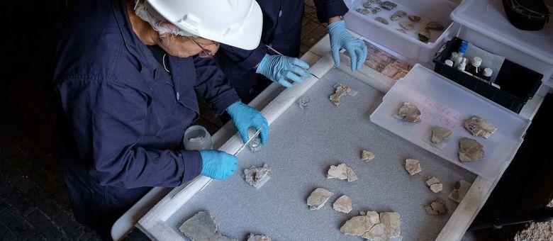 Arqueóloga lidera trabalho de restauração de parte da Coleção Imperatriz Teresa Cristina