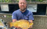 Autoridades de vida selvagem dos Estados Unidos perceberam um estranho padrão que se inicia: a captura de peixes dourados gigantes na natureza