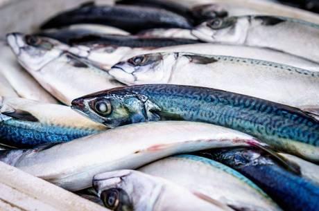 Peixe, frutos do mar, peixaria
