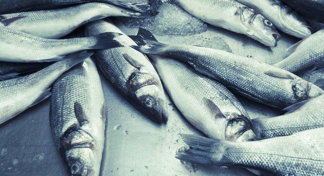 A importação de pescados caiu 52% neste ano