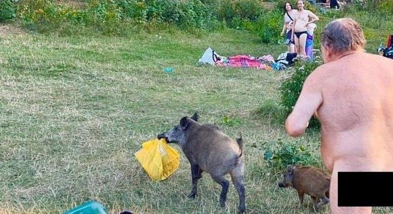 Nudista alemão perseguiu javali para recuperar notebook dentro de sacola