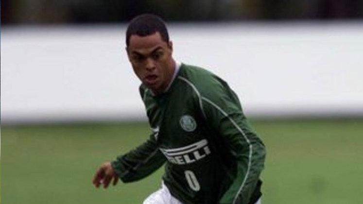 Pelo Palmeiras, Dodô jogou o ano de 2002, no qual não conseguiu atender às expectativas do clube, jogando pouco por problemas com lesões. O Verdão acabou o ano rebaixado e o atacante saiu no ano seguinte. Ao todo, ele tem apenas 16 jogos pela equipe, com três gols marcados.