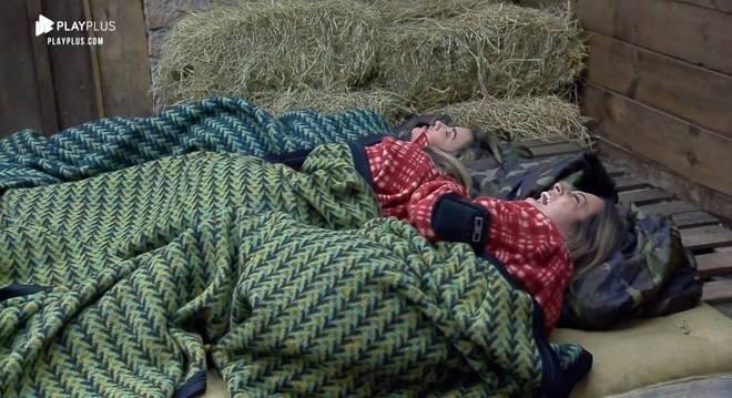 Enquanto dormiam na Baia, as peoas se assustaram com um pássaro que entrou no local