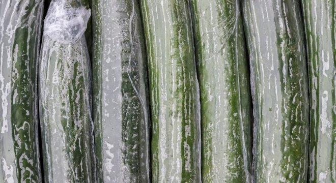 O que é pior: o plástico filme ou os alimentos que apodrecem pela má conservação?