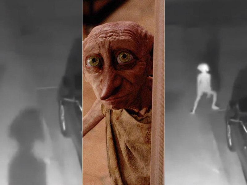 personagem de harry potter e flagrado por camera de vigilancia fotos r7 hora 7 personagem de harry potter e flagrado