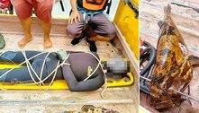 Pescador morre após ser arrastado por peixe empalado com arpão
