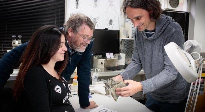 pesquisadores ao redor do fóssil