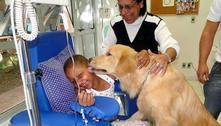Pet terapia coloca cães junto a crianças, adultos e idosos em tratamento médico