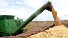 Entidades do agronegócio fazem manifesto defendendo democracia