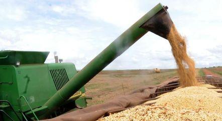 Agronegócio tem impulsionado mercados de luzo
