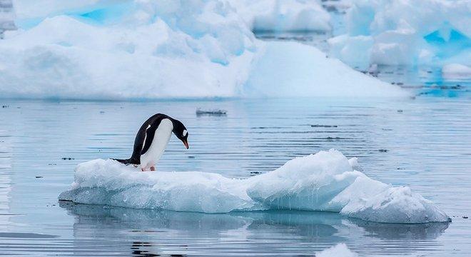 Hoje a Antártida está protegida, mas em 2048 isso pode mudar