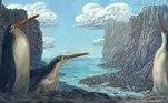 Fóssil revela espécie de pinguim gigante que vivia na Nova ZelândiaVEJA MAIS