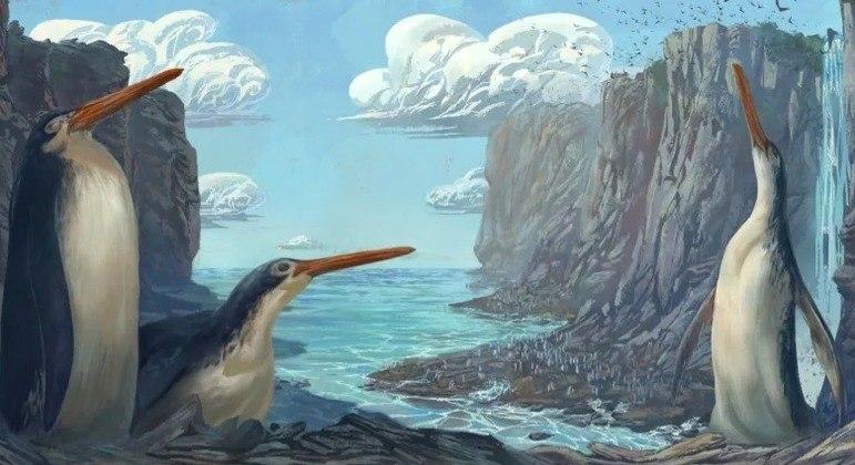 A coautora do estudo sobre os pinguins gigantes, Simone Giovanardi, fez esta ilustração de como seriam os animais
