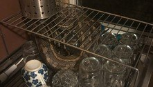 Sujou! Píton em escorredor obriga morador a lavar a louça de novo
