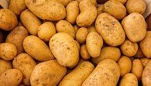 Alta no preço da cebola, batata e açúcar eleva cesta básica em SP