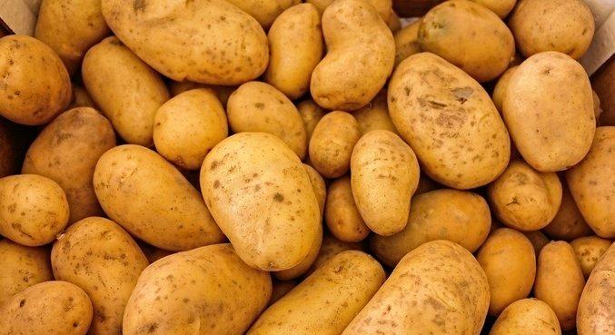 Preço do quilo da batata registrou alta de 8,53% em janeiro