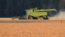 China deve aumentar produção de grãos no país e reduzir importações