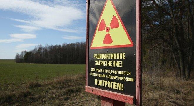 As plantas podem se adaptar após um desastre nuclear, mas seres humanos nunca devem colher ou comer frutas e cogumelos de áreas contaminadas por radiação