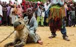 Dadin Duniya senta-se em uma hiena durante um circo em Gabasawa, estado de Kano, Nigéria. Em várias regiões do país, as hiena são vistas como sinistras, muito por causa dos hábitos de necrofagia, mas no norte da Nigéria são encaradas como animais quase de estimaçãoNÃO PERCA: Resgate improvável: pescadores fisgam cervo em águas profundas