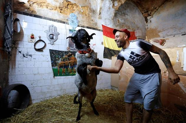 A felicidade pode ser definida por essa imagem, registradas em Túni, capital da Tunísia. Vemos Mourad dançando com seu carneiro chamado 2Pac. Esse é um dos ápices da humanidade e felizmente o HORA 7 pode publicá-lo