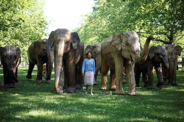 Natasha Hibbert posa ao lado de uma exposição de esculturas de elefantes em tamanho real, parte da campanha CoExistenceNÃO VÁ EMBORA:Cidade fica de luto após canguru 'gigante e gentil' morrer atropelado