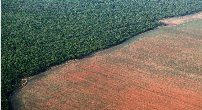 Plantação ao lado de área de floresta amazônica no Mato Grosso; ex-ministro destaca papel do bioma no agronegócio