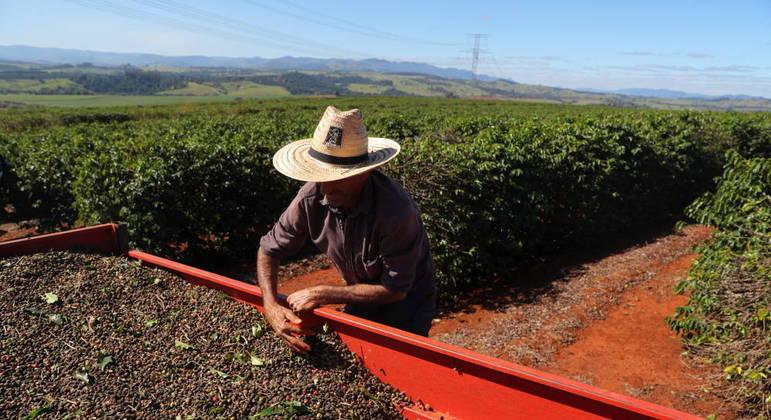 Área total a ser colhida teve alta de 3,9% em relação a 2020 e chegou a 68 milhões de hectares