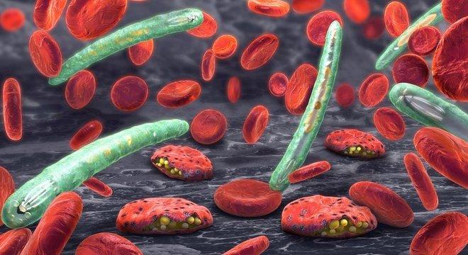 Malária é causada em humanos por pelo menos cinco espécies do parasita plasmodium