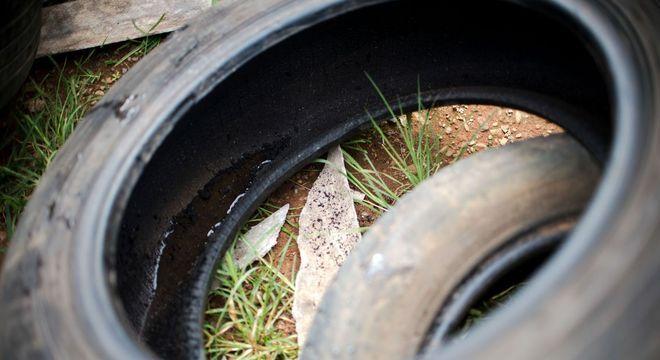 Pneus com água parada funcionam de criadouros para os mosquitos da dengue